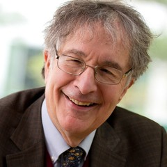 A beginner's guide to Professor Howard Gardner