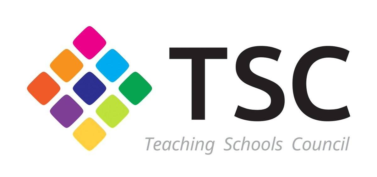 Focus on ... The Teaching Schools Council